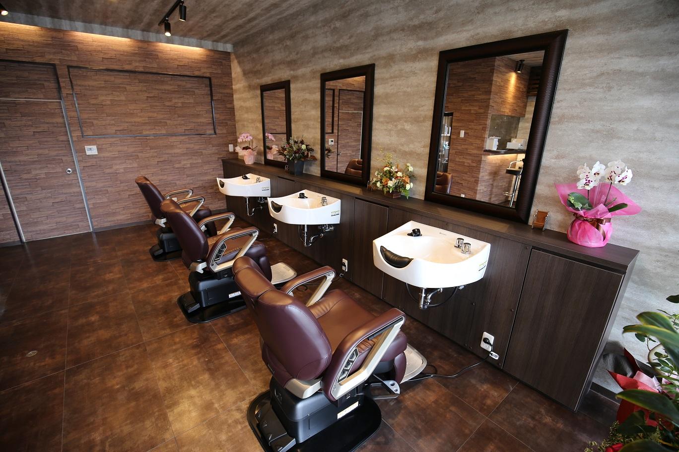 Barber Dandygo 1