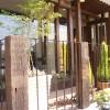 枕木とアイアンの組み合わせがとってもかわいいフェンス。お店と外を区切りながらも、開放的で、入りやすい雰囲気です。