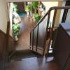 一階には観葉植物を置いて、癒しを提供します。